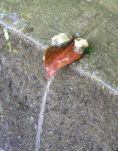 С какими подводными камнями приходится сталкиваться начинающему копирайтеру?