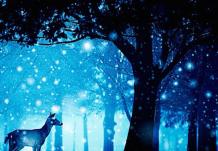 Лучшие новогодние, рождественские и просто зимние сказки