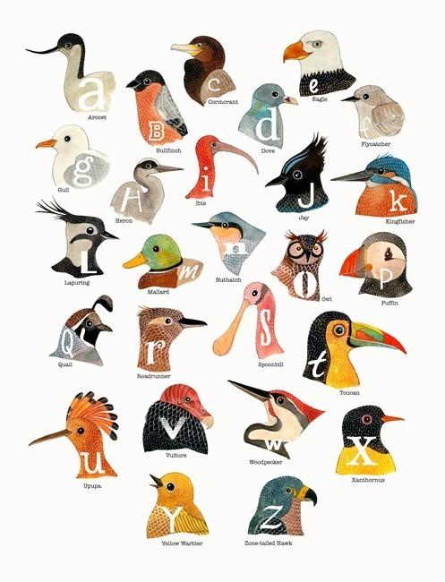 Алфавит: Птицы