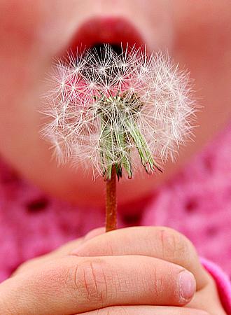 День Защиты Детей: загадай желание!
