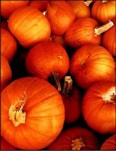"""Нескучная осень на """"Блоги Мам"""""""